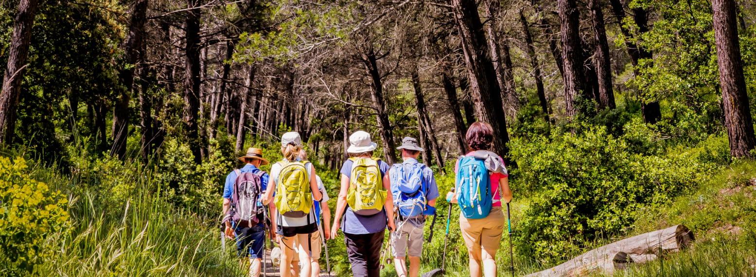 Randonnées - Marcher dans les Alpilles