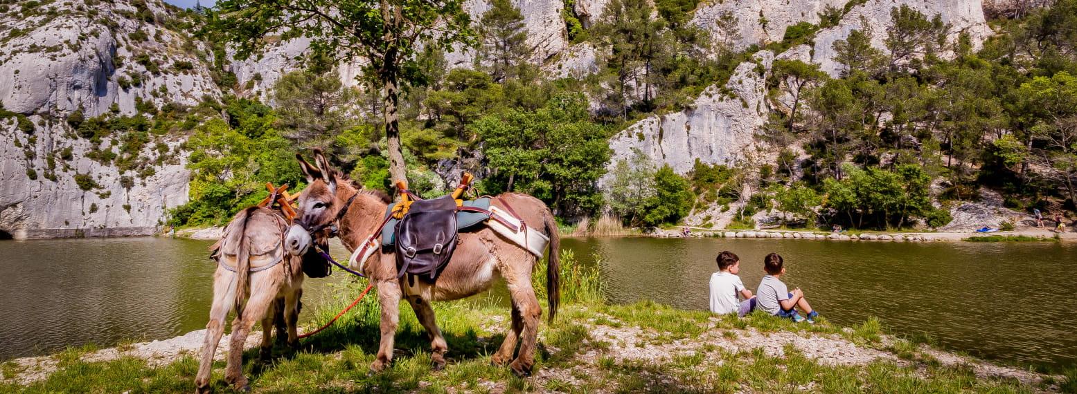 Lac du Peïroou et les ânes
