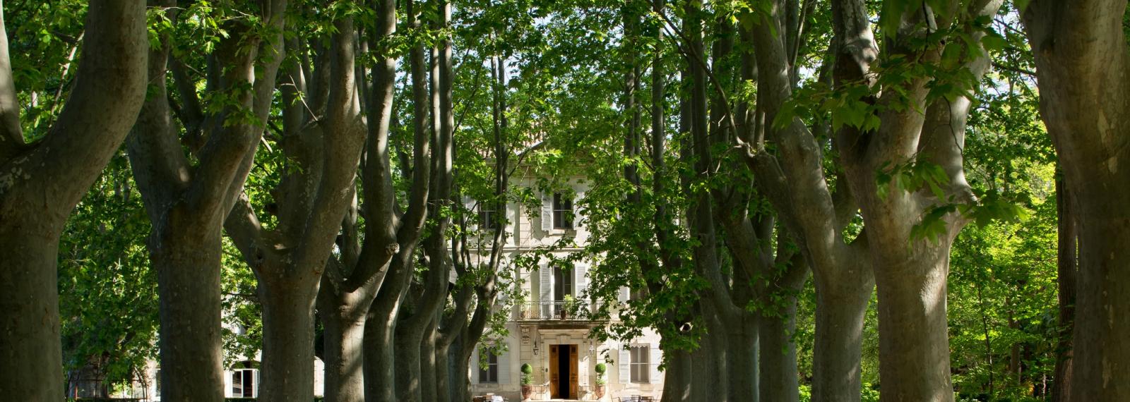 Hôtel Le Château des Alpilles à Saint-Rémy-de-Provence