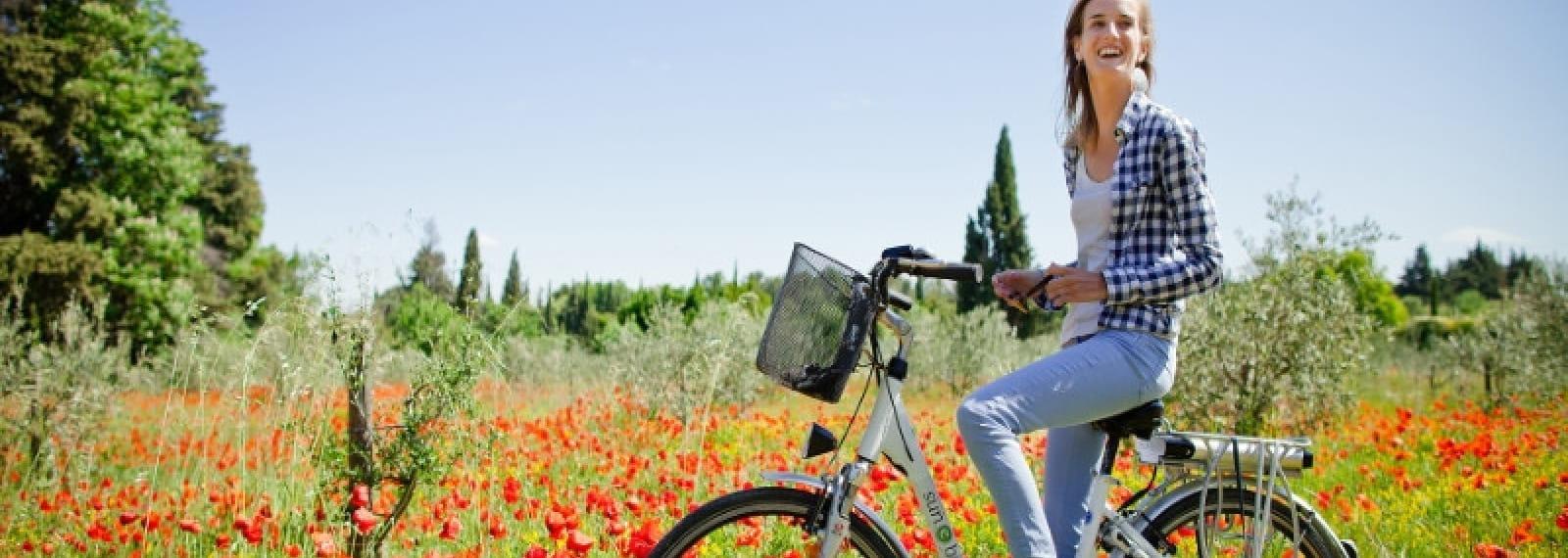 Sun e-bike