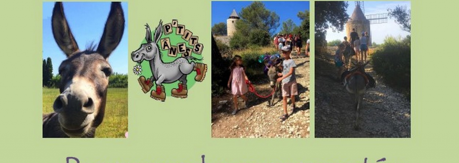 Promenade commentée au pas de l'âne sur le Sentier des Moulins d'Alphonse Daudet - été 2021