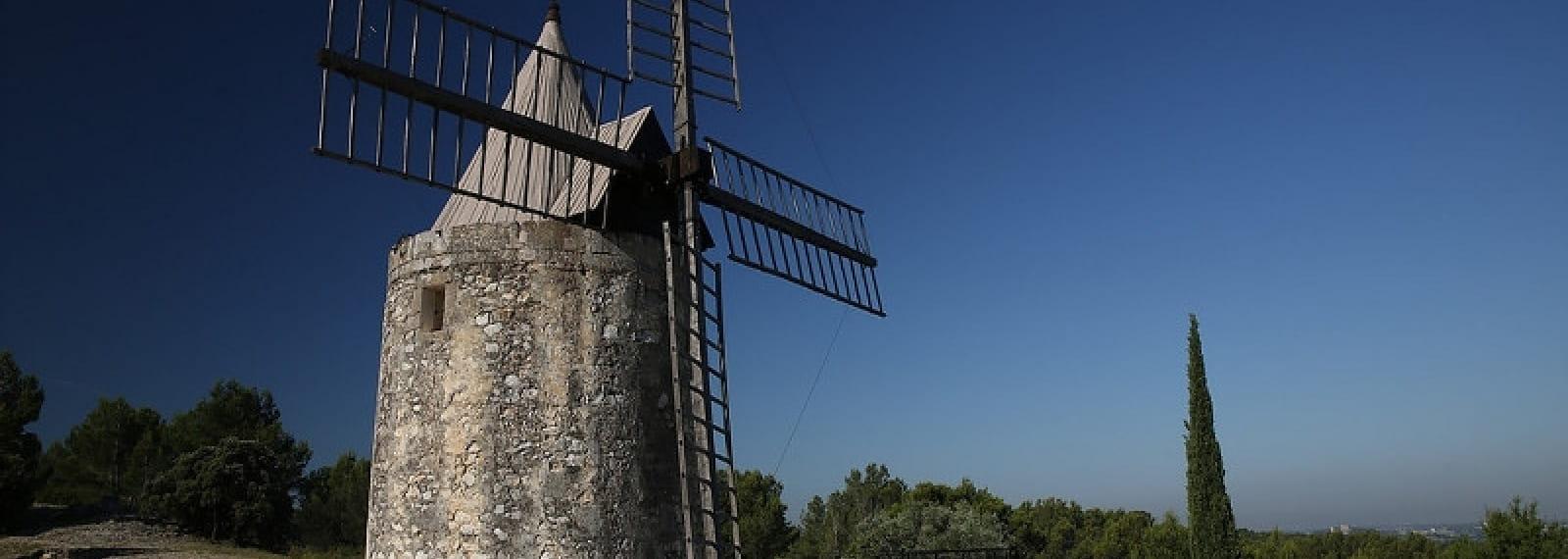 Le Sentier des Moulins d' Alphonse Daudet