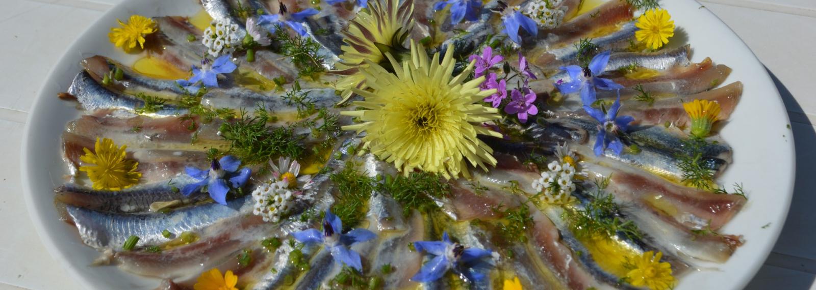 Le Mas des Collines - Ateliers des plantes sauvages