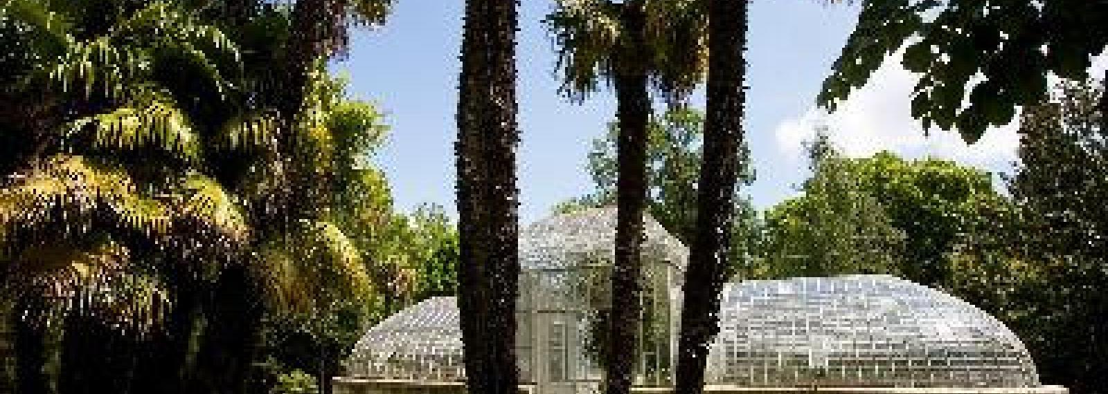 Jardin du Château de Roussan