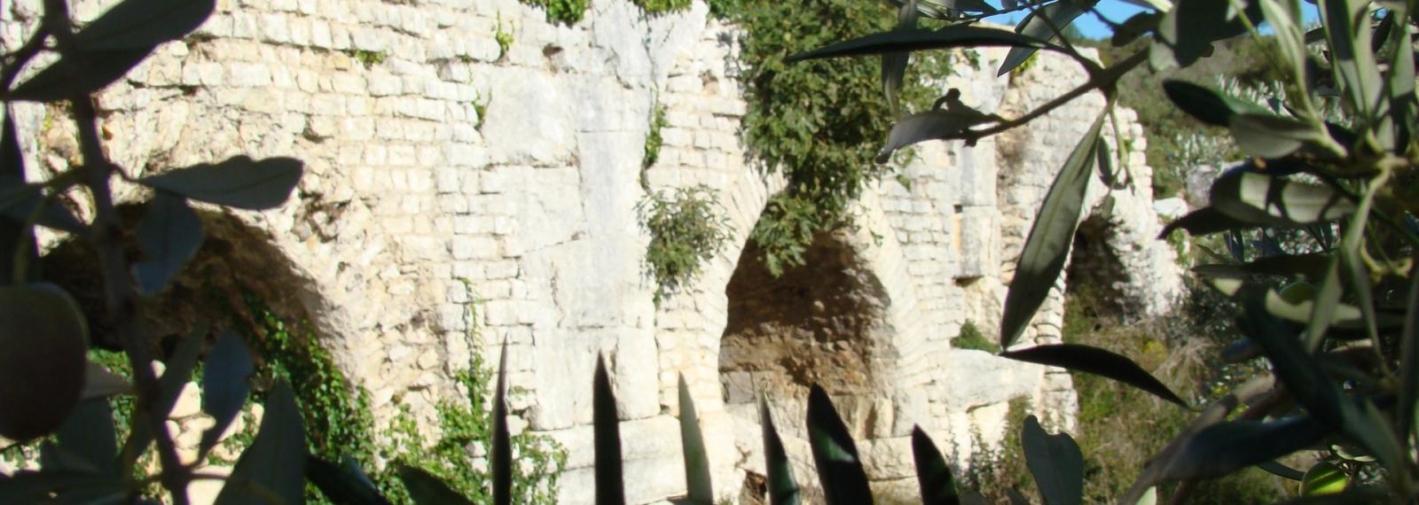 Les Oliviers de l'Aqueduc