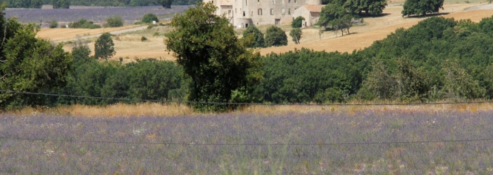 Château la Gabelle